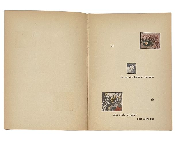 Page illustrée de Max Ernst Sept Microbes